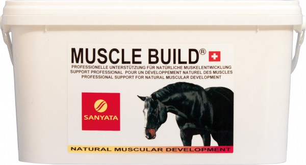 MUSCLE BUILD®