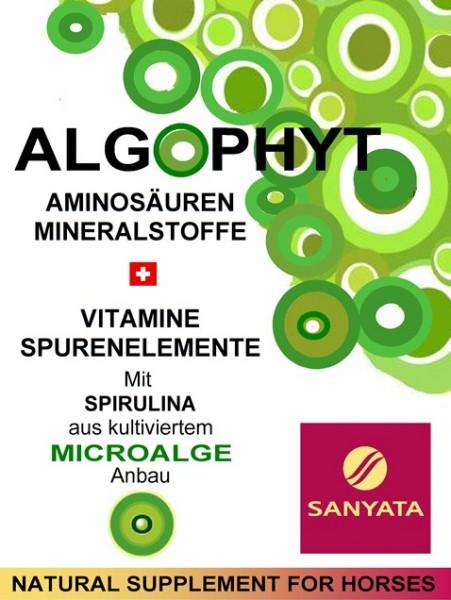 ALGOPHYT