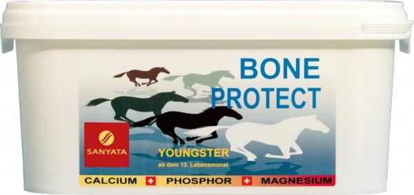 BONE PROTECT